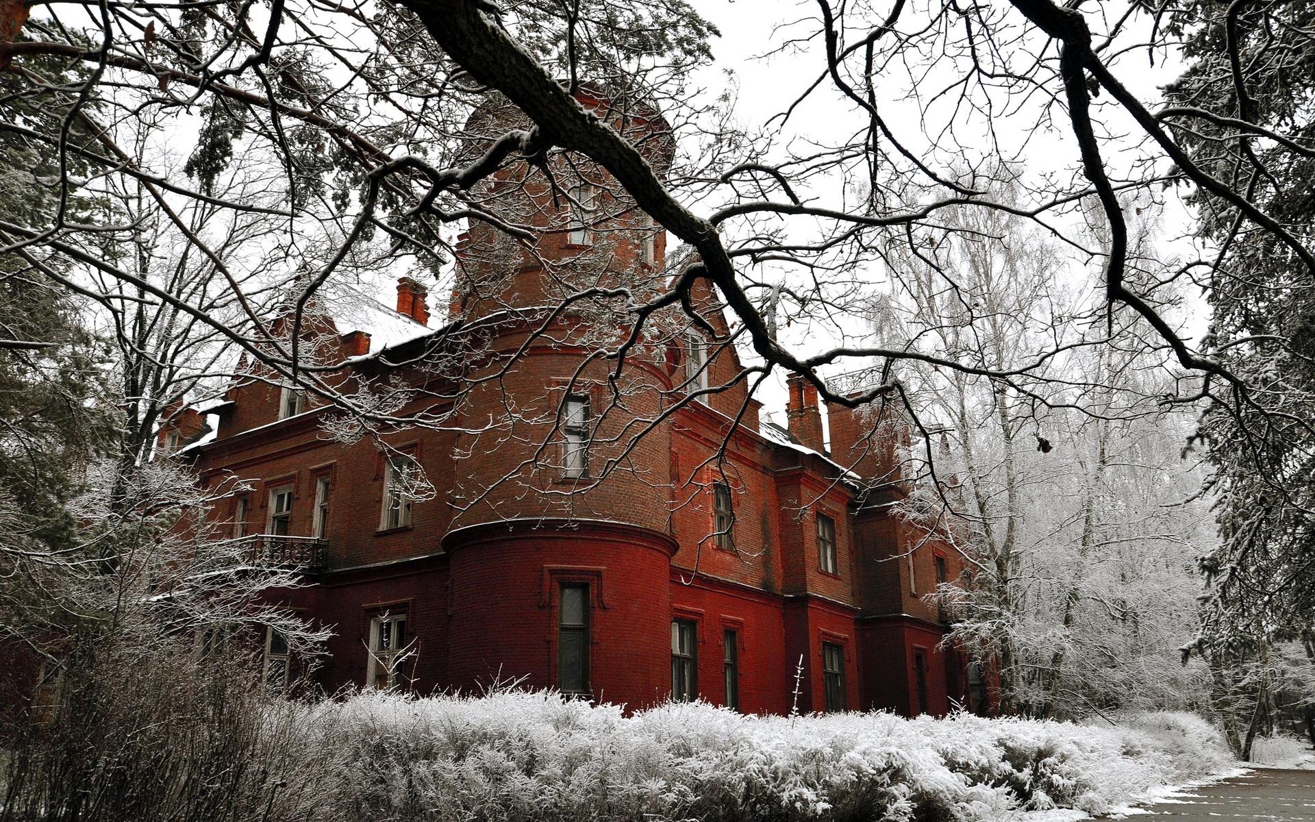 Картинки замок, структура, камень, ветка, дерево, снег, иней, кусты фото и обои на рабочий стол