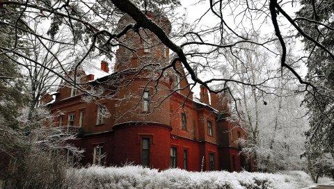 замок, структура, камень, ветка, дерево, снег, иней, кусты