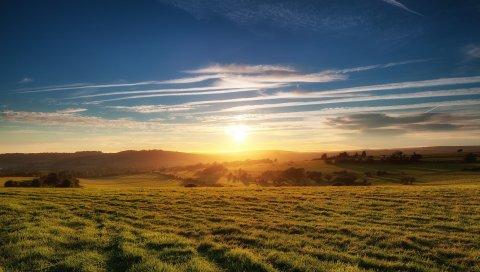 поляна, луг, закат, солнце, свет, оранжевый, равнина, трава