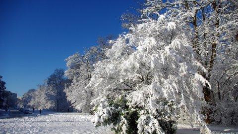 Франция, velizi-vilakubl, деревья, иней, снег, зима, ясно