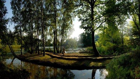 Es, парк, река, свет, фонтан, статуя, отражение, прохладно