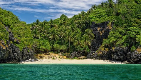Остров, побережье, пальмы, пляж, небо, скалы, спокойный