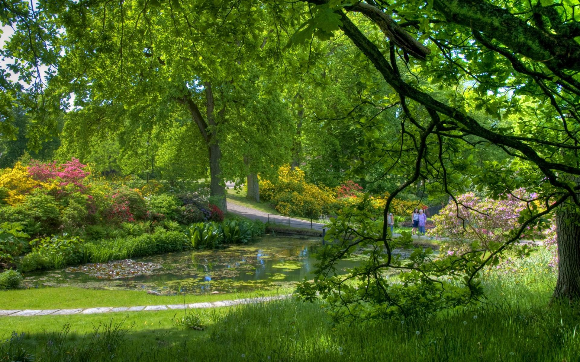 Картинки Деревья, сад, пруд, люди, зеленый, спокойствие фото и обои на рабочий стол