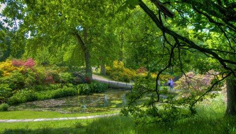 Деревья, сад, пруд, люди, зеленый, спокойствие