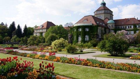 Поместье, цветы, сад, растительность, двор