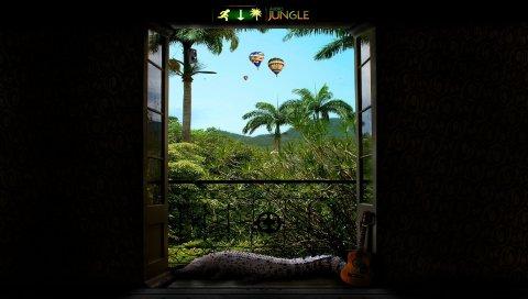балкона, джунгли, гитара, крокодила, выхода из
