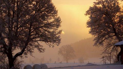 рассвет, зима, солнце, небо, блеск, утро, деревья, снег, туман, мороз, садовое