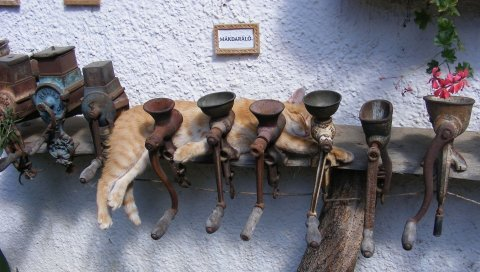 Кошка, мясорубка, вниз, металл