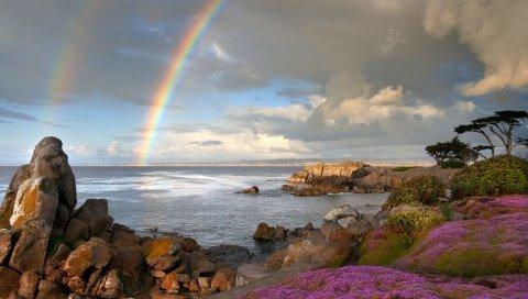 Радуга, море, берег, камни, цветы