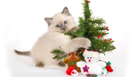 Котенок, пятнистый, игрушки, дерево, новый год, рождество