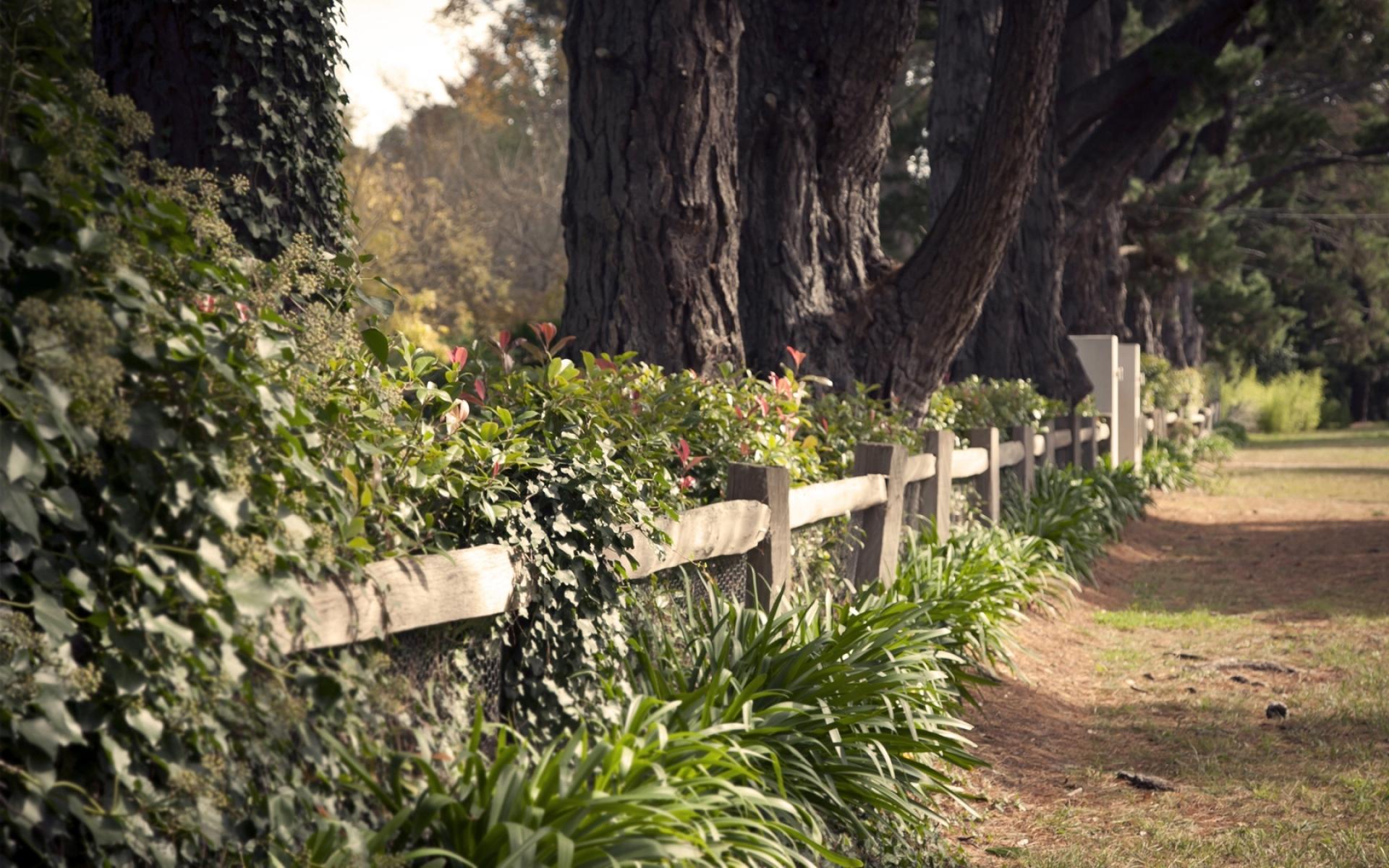 Картинки парк, забор, охрана, трава, земля, дороги, дорожки фото и обои на рабочий стол