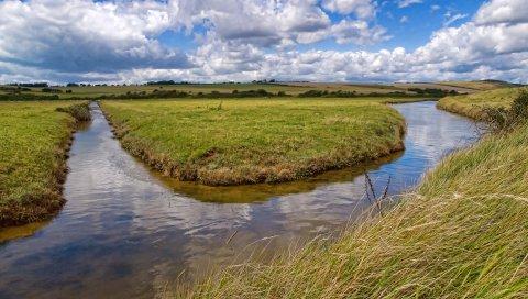 Река, трава, канал, поле, солнечно