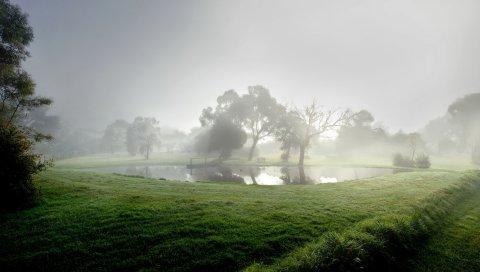 Пруд, туман, утро, водохранилище, деревья, лето, прохладно