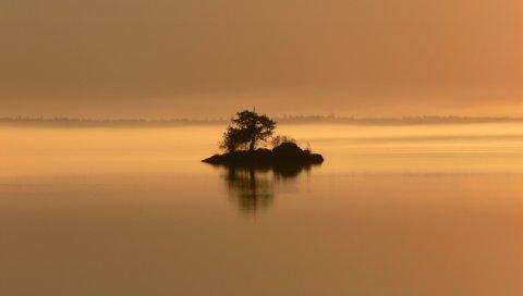 Остров, дерево, кусты, вечер, одиночество