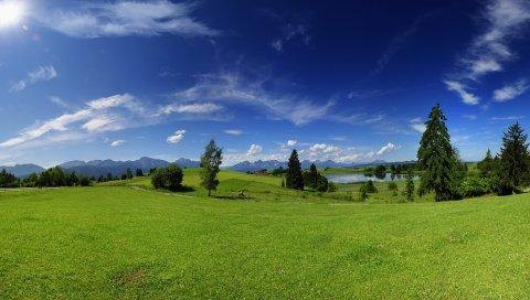 Равнина, деревья, луг, лето, жара, зеленый, небо, солнечно