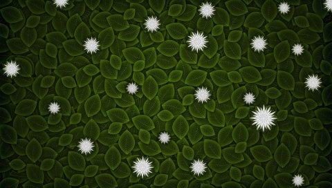 Минимализм, вектор, листья, цветы
