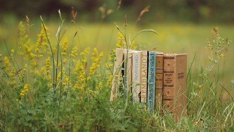 книги, трава, стек,настроение