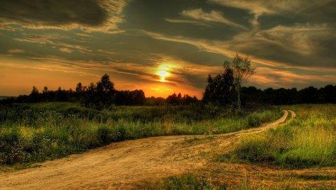 Закат, дорога, страна, подпись, вечер, сумерки, лес, трава, растительность, лето, поле