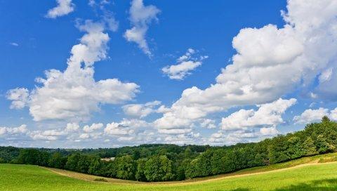 панорамы, луг, деревья, дорога, лето