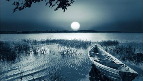 Лодка, луна, диск, свет, тьма, трава, наклон, резервуар