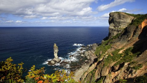 Скалы, берег, риф, море, пена, листья