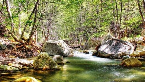 Река, камни, древесина, текущая