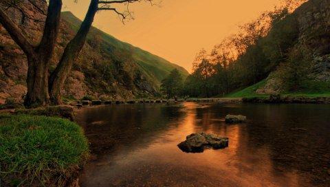 Озеро, пруд, камни, деревья, сумерки, трава, вечер