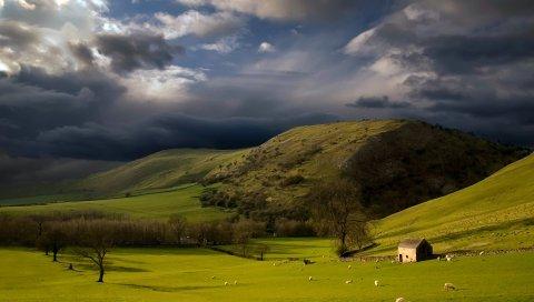 Высота, горы, склоны, пастбища, облачно, небо, буря, облака, овец, плохая погода, зеленый