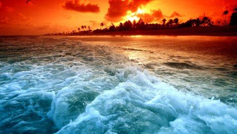 Остров, падение, оранжевый, море, пена, пальма, переходы, цвета