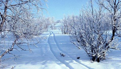 Снег, сугробы, следы, санки, зима