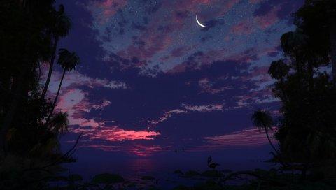 Небо, луна, звезды, озеро, берег, ночь, тропики, камни