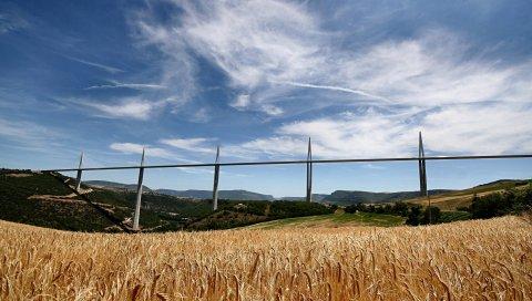Мост, Франция, поле, сельское хозяйство, рожь, пшеница