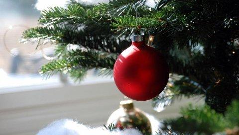 Рождественские украшения, мяч, иглы, филиал, макро