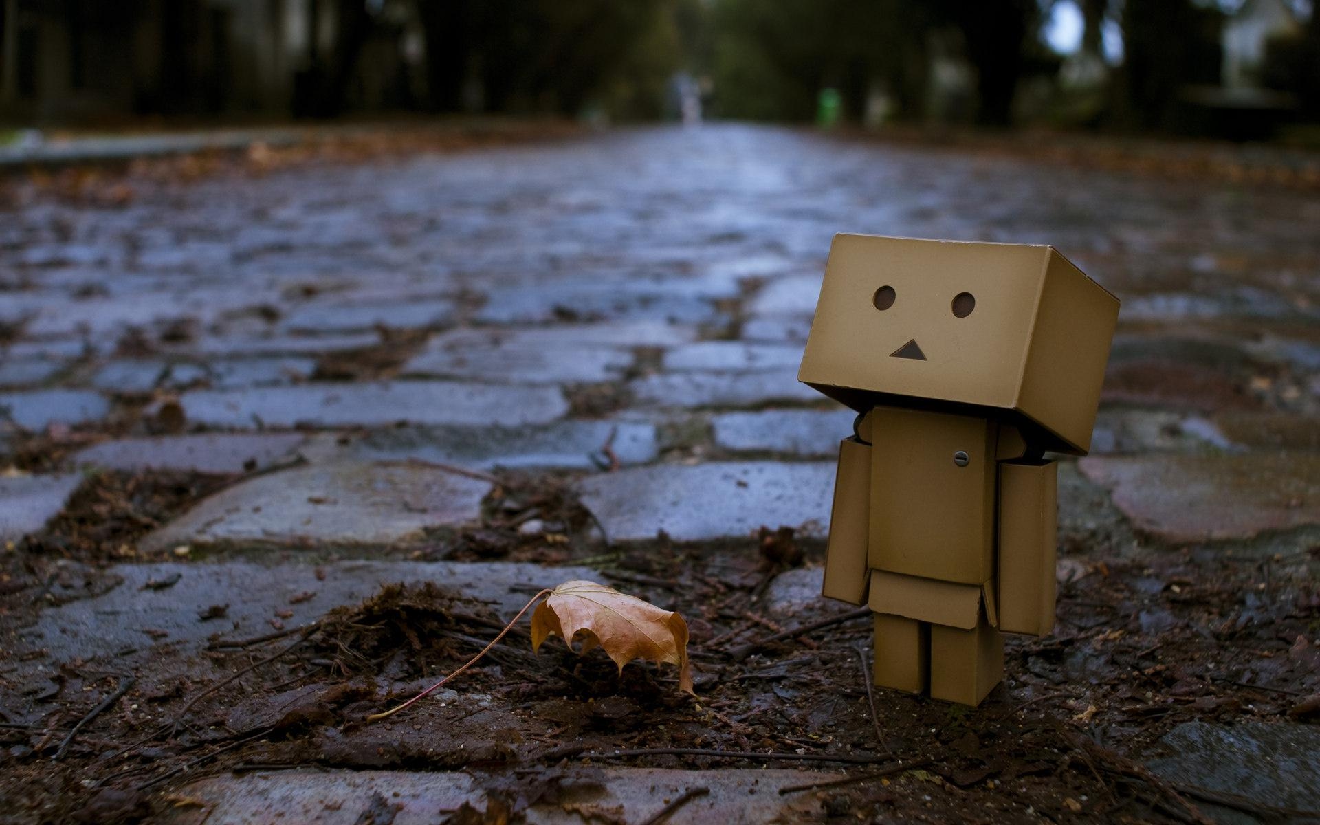 Картинки Danboard, коробки, робот, тротуар, листья, осень, клен фото и обои на рабочий стол