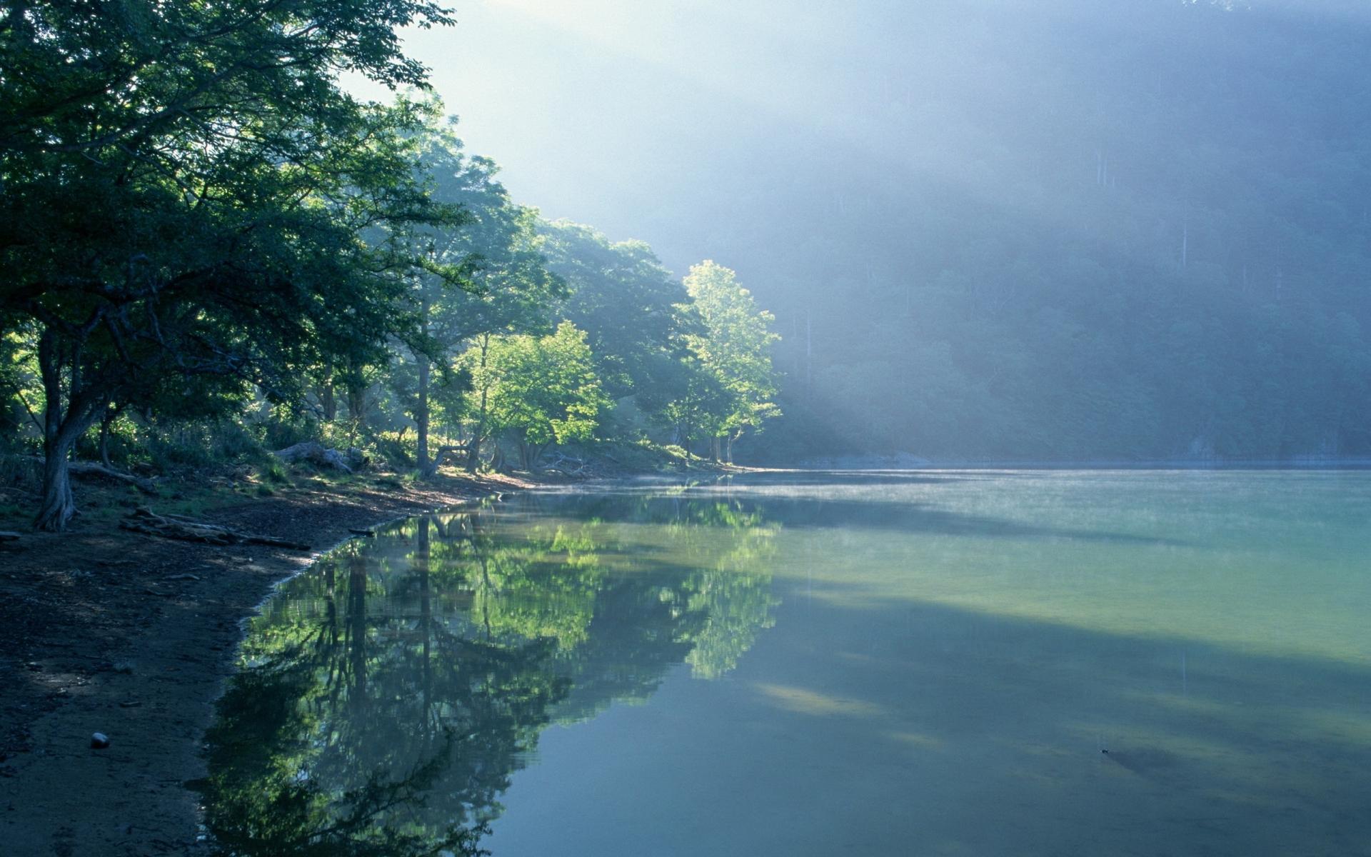 Картинки Берег, деревья, туман, пробуждение, лучи фото и обои на рабочий стол