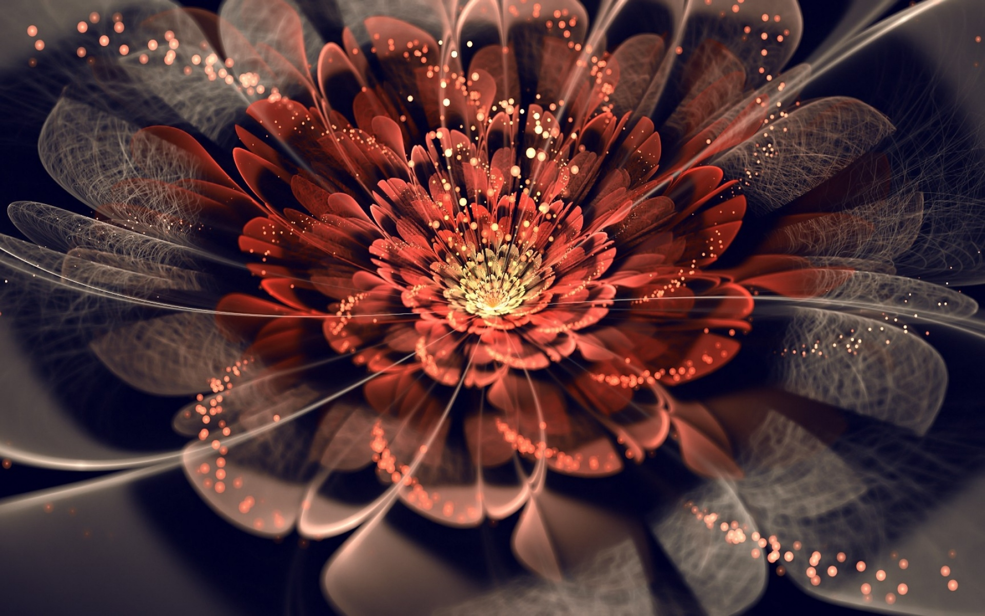 Картинки Цветок, фон, линия, тень фото и обои на рабочий стол