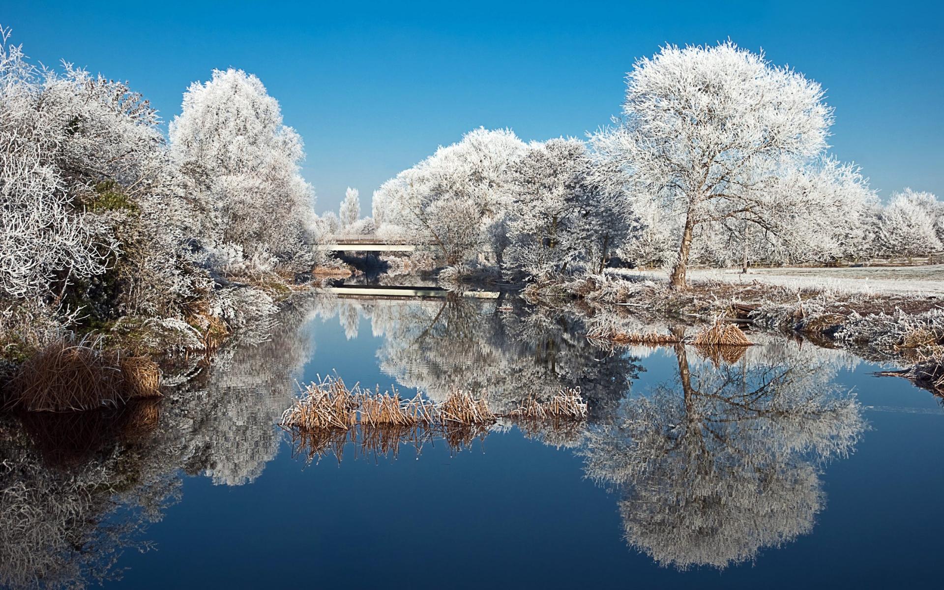 Картинки Мороз, деревья, озеро, отражение фото и обои на рабочий стол