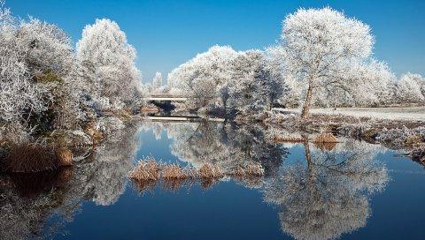 Мороз, деревья, озеро, отражение