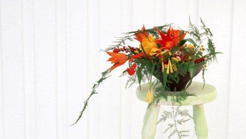 Тюльпаны, ромашки, аспаргус, цветы, плантаторы, стул