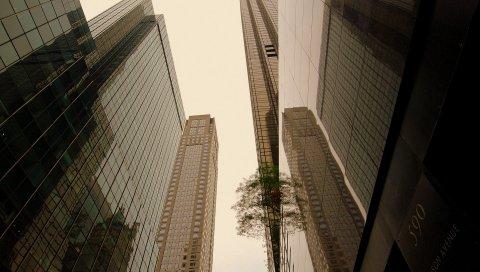 Крыша, тень, стекло, небоскребы