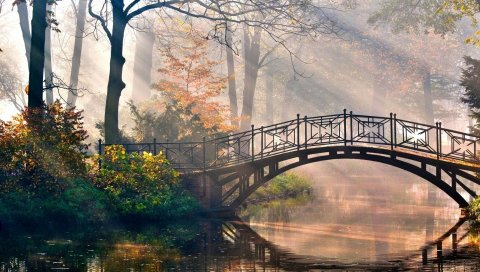 Мост, солнце, лучи, свет, утро, река, парк, сказка