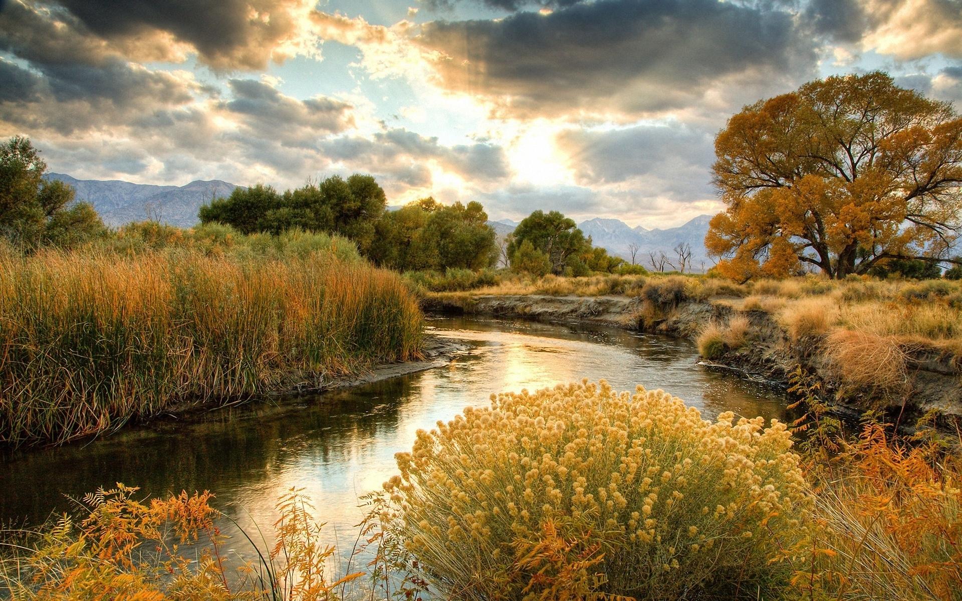 Картинки Кусты, река, солнце, облака фото и обои на рабочий стол