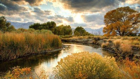 Кусты, река, солнце, облака