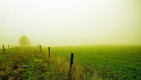 Поле, забор, туман, зеленый