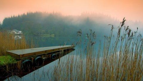 Пирс, туман, трава, озеро