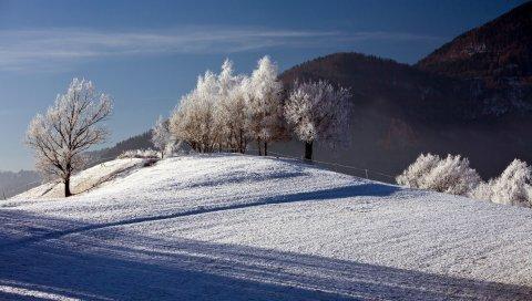 Деревья, зима, иней, пейзаж, защита, холмы, рельеф