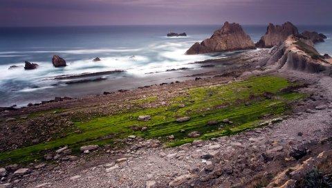 Скалы, побережье, океан, облачно, трава, зелень