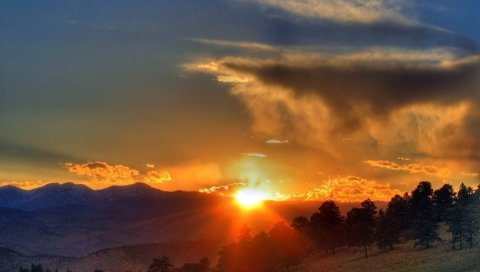 Солнце, закат, апельсин, деревья