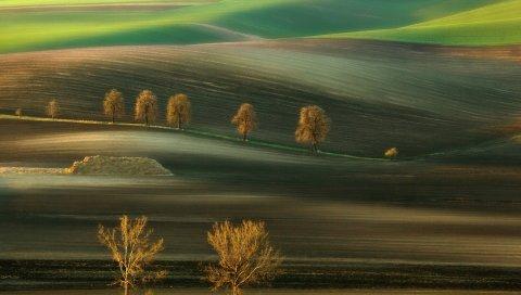 Поле, деревья, холмы, линии, осень