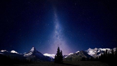 Млечный путь, август, небо, елки, деревья, ночь